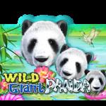 เกมสล็อต Wild Giant Panda